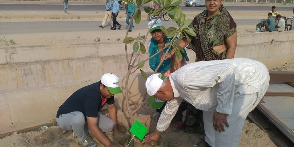 Tree Plantation held at Gaurcity
