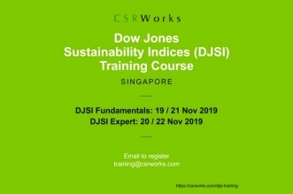 DJSI Training Course